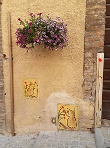 Uz gardēžu laukiem, Umbrijā
