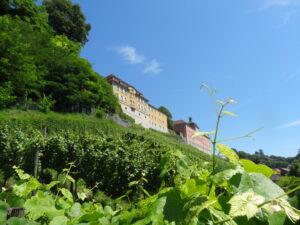 Šveices Alpi un Bodenes ezera noslēpumi