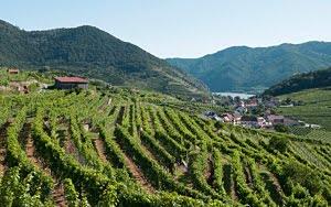 Elīna Garanča ar draugiem – Klasika Zem zvaigznēm, Vīne un Vahau vīna ieleja